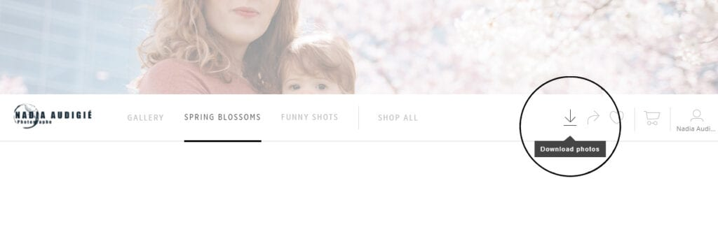 How to download your images - Nadia Audigie Photography - Portrait Photographer Strasbourg Alsace (1)